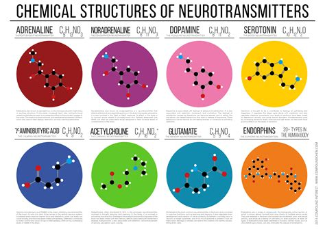 Neurotransmitters Also Search For Pin By Pugnae On Science
