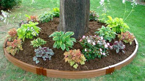 tree garden ideas landscaping around trees landscape tree ring gardening