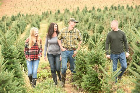 loss spurs harford tree farm to support cancer lifenet baltimore sun
