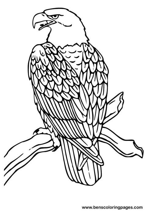 Free Coloring Pages Of Mandala Eagle Eagle Coloring Page