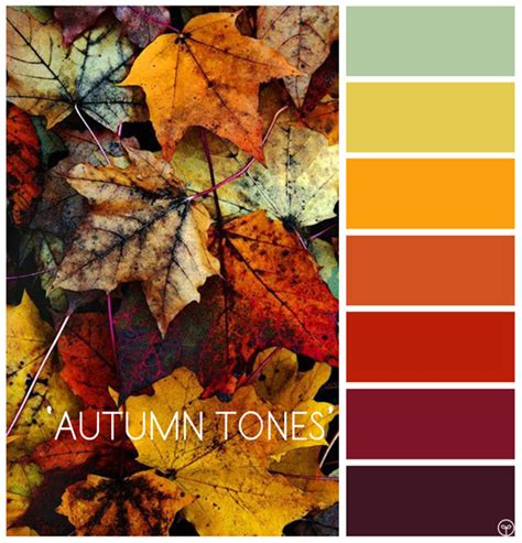 colour inspiration littletree designs colour inspiration autumn tones
