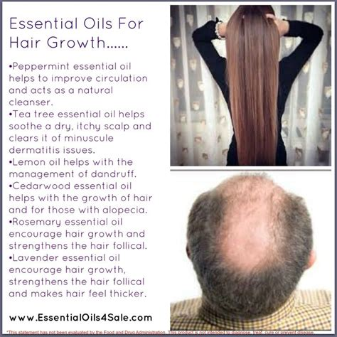essential oils for hair growth and thickness 25 best ideas about oil for hair on pinterest natural