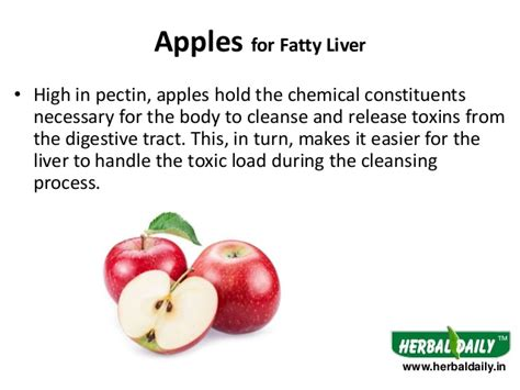 What To Eat To Detox Your Liver by Foods To Avoid When Detoxing Liver Foodfash Co