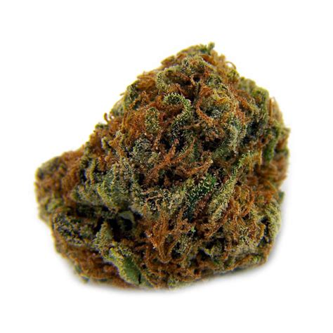 seed for sale marijuana seeds for sale