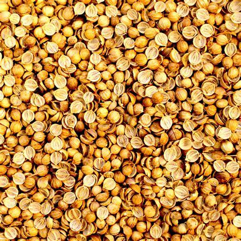 coriander indonesia split coriander seeds buy split coriander seeds product