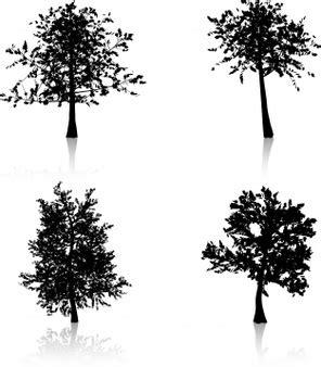 vectores de siluetas completamente gratis recursos photoshop arbol silueta sin hojas fotos y vectores gratis