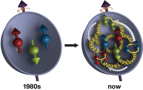 Proton Quarks by Physicists Zoom In On Gluons Contribution To Proton Spin