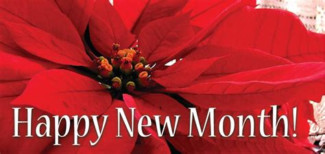 happy sunday happy new month of july 2012