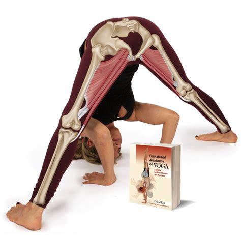 functional anatomy of yoga yoga anatomy book functional anatomy of yoga by david keil