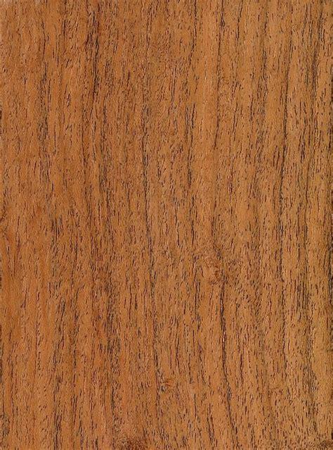 mesquite woodworking honey mesquite the wood database lumber identification