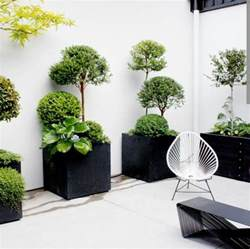 Design Beautiful Indoor Plants Ideas Beautiful Indoor Plants Pictures So Can You Your Apartment Decorating Fresh Design Pedia