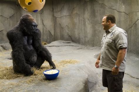 judd apatow zookeeper mommasaid reel life with jane zookeeper