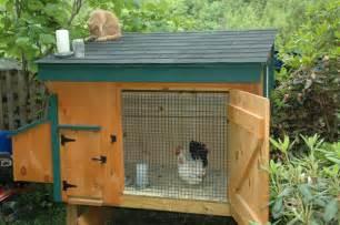 chicken coop designs a small chicken coop
