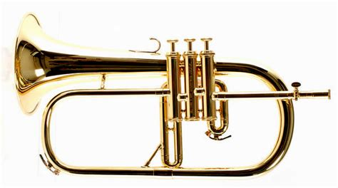 Bugle Instrument Picture