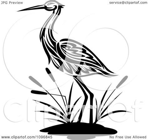 clipart black  white crane wading  cattails royalty