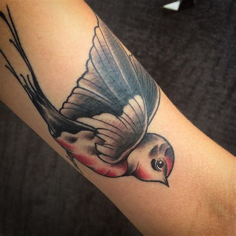 swallow bird tattoo 80 best bird meaning and designs fly in