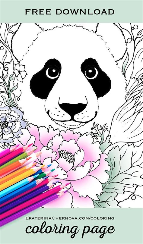 panda coloring pages only coloring best 25 panda coloring pages ideas only on