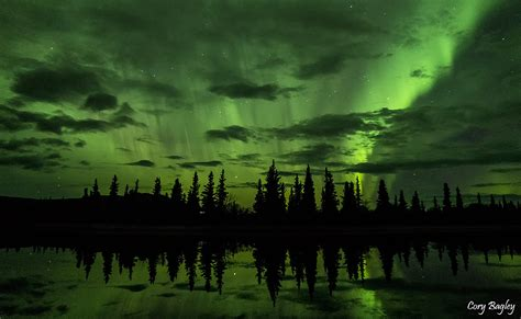 healy alaska northern lights northern lights aurora borealis from otto lake in healy