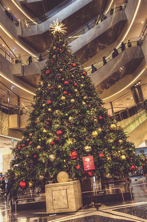 Pohon Natal Murah Berkualitas Pohon Cemara Hiasan Natal foto pohon cemara raksasa meriahkan natal di korea selatan foto 3 dari 10