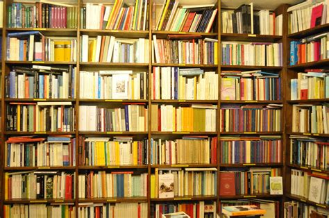 libreria nuova terra libreria esoterica ibis terra nuova