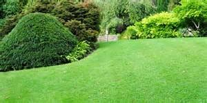 5 tips for a true green lawn and healthy lifestyle