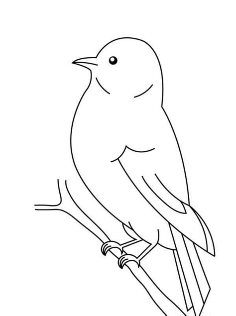 Preschool Coloring Pages Birds | preschool bird coloring pages 6 171 preschool and homeschool
