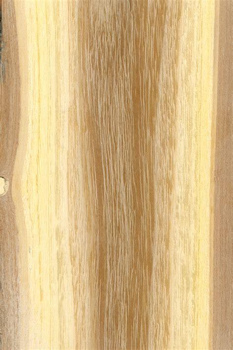 Mit Welchem Bohrer Fliesen Bohren 4890 by Akazienholz 187 G 228 Ngige Preise Und Preisfaktoren