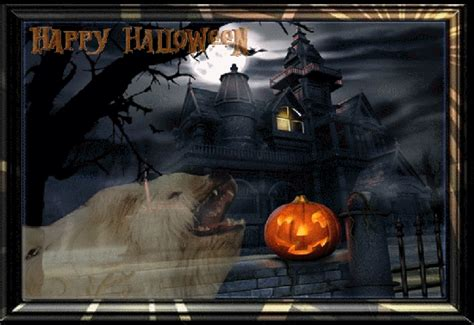 helloween wann christines b 228 renh 246 hle