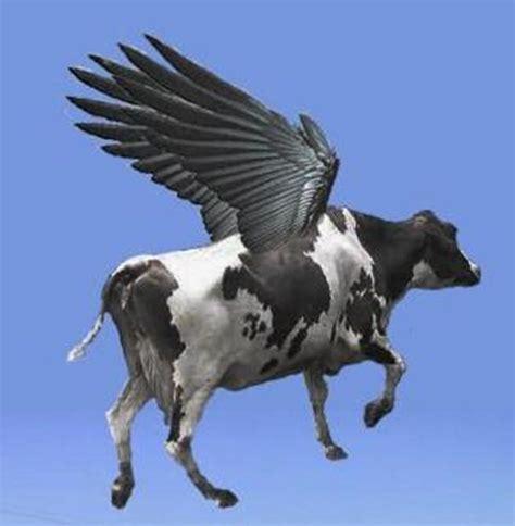 imagenes de vacas alegres vacas engra 231 adas