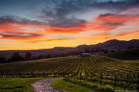 napa valley set of 2 explore sonoma wine country with silver service tours honor mansion