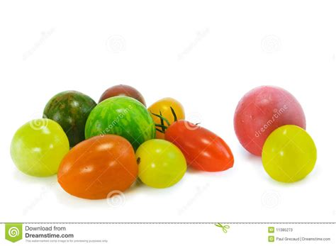 Tomat Multi Color colorful organic tomatoes stock photos image 11385273