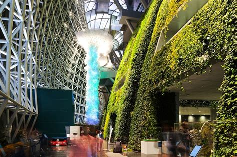 lush curvaceous green wall grows  iarc architects