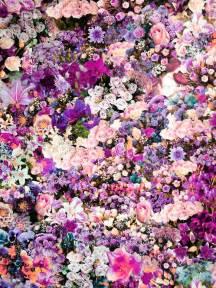 Purple Flower Prints - purples