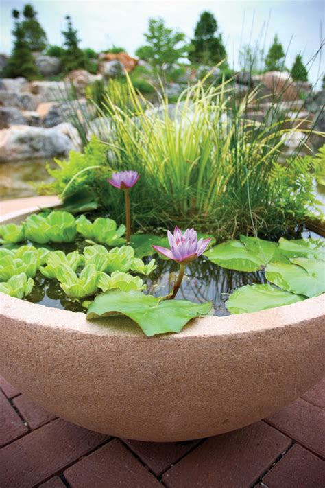 small water gardens in containers container water garden ideas unseen pictures 4 you