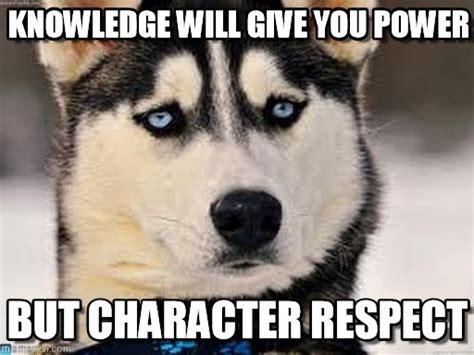 Serious Dog Meme - serious dog memes on memegen random crack ups