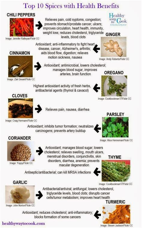 seasoning savvy how to cook with herbs spices and other flavorings books diet infographic top 10 spices with health