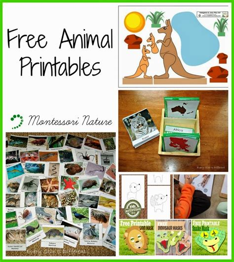 montessori printables animals free animal printables montessori nature