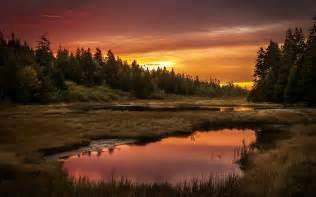 Landscape Pictures Of Sunset Sunset Lake Forest Landscape Reflection Wallpaper