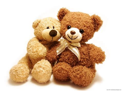 day bears valentines day teddy gift ideas n hd wallpapers