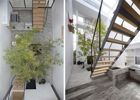 house lively courtyard brings nature indoors