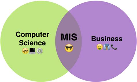 Mba In Mis Courses by How To Choose Between Ms In Cs And Mis