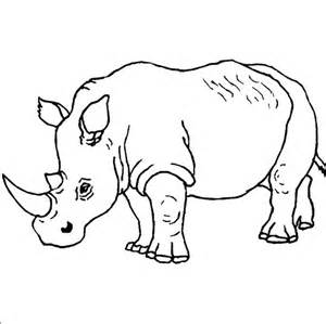 rhino coloring page kindergarten drawing rhino coloring pages batch