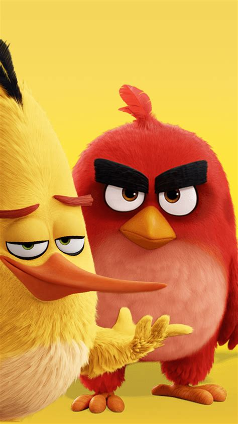 angry on a angry birds hd wallpaper for your mobile phone