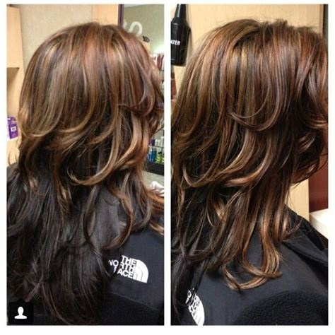partial highlights on brown hair partial highlight on dark hair dark brown hairs