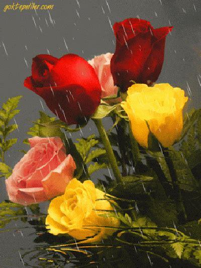 imagenes bellas de lluvia bonitas imagenes gif de flores y lluvia