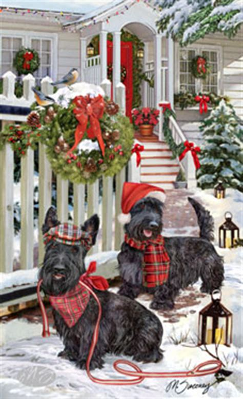 shop for cards scottish terrier