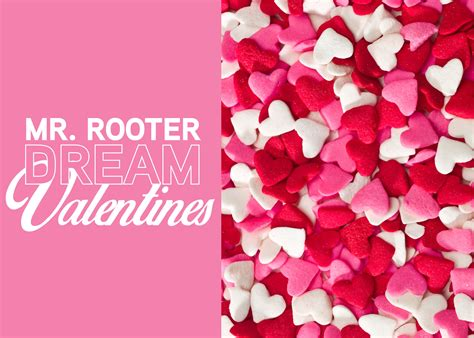 Rooter Rooter Mr Rooter Valentines Mr Rooter