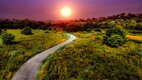 pathway pictures wallpaper pathway bright sun summer hd nature 2654