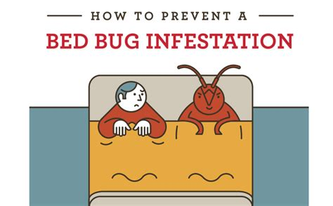 how to prevent bed bugs from spreading how to prevent a bed bug infestation infographic