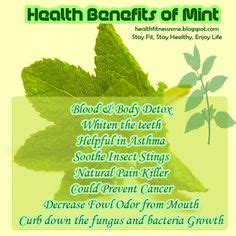 Detox Benefits Of Mint by Herbs Spices Roots Health Benefits On Healing